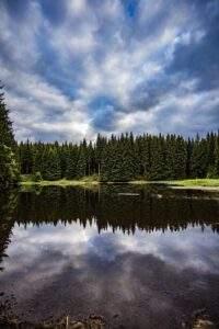 Sichtweisen Thüringer Wald