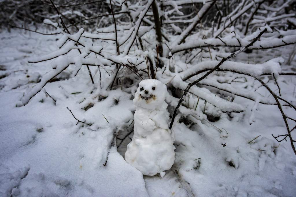 Schneemann bauen, Schneeballschlacht - Winter ist so schön!