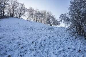Winterliche Sichtweisen, betrachtet aus unterschiedlichen Perspektiven.