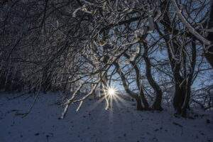 Der Winter in Thüringen von seiner traumaften Seite.