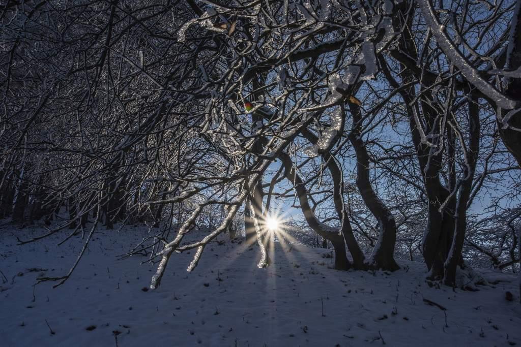 Der Winter in Thüringen von seiner traumgaften Seite.